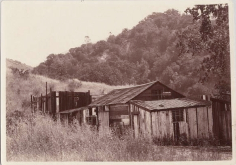 """Alum Rock Jail. Alice Iola Hare, ca. 1905. On the back of the photograph is written, """"Much of the original road into Alum Rock Park was built by County Jail prisoners who were housed - and guarded - in these shacks. The roofed structures and the open one (stockade?) behind them stood for many years after the road building job was completed."""""""