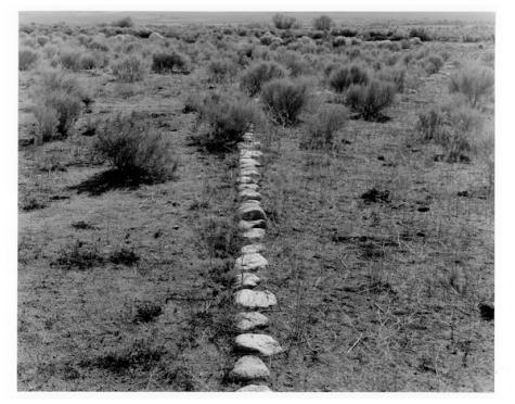 Stones. Mark Kirchner