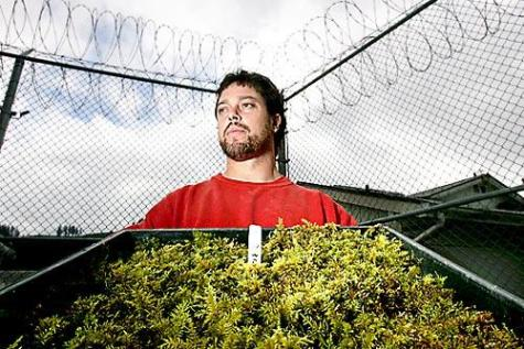 Inmate Jeff Curbow, 40, says he improved a watering system for the moss after others built a special hut for it at Cedar Creek Corrections Center in Littlerock, Thurston County. © Ken Lambert for The Seattle Times.
