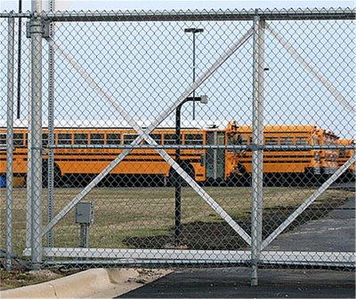 School Buses in Yard
