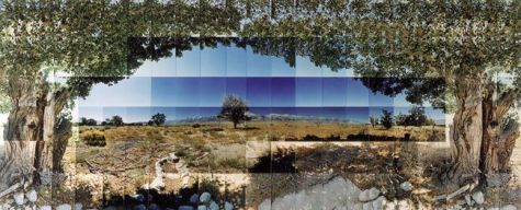 "Manzanar Relocation Camp, Tree View, Inyo, California © Masumi Hayashi. Panoramic photo collage withFuji Crystal Archive prints, 1995. Size: 27"" x 63"""