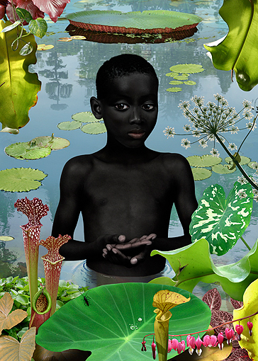 World #13 2006, BY Ruud Van Empel, Cibachrome, 33 x 36.5 inches