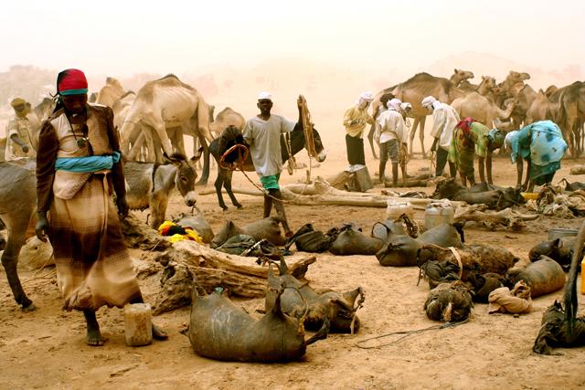 janjaweed sudanese government | kayt