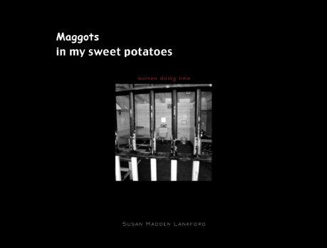 maggots-book-cover-2
