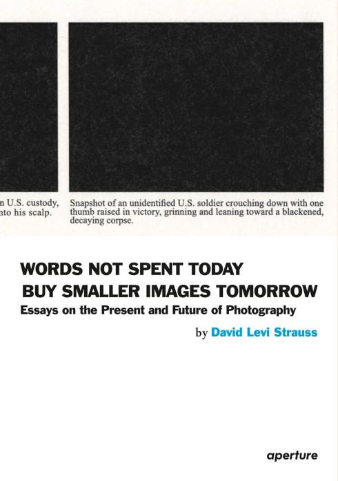 David_Levi_Strauss_words_not_spent_today