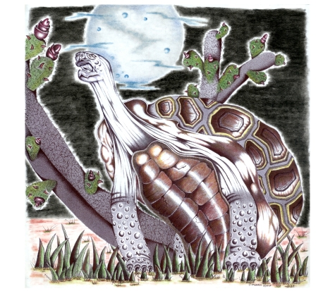 Morris Turtle 2000 copy