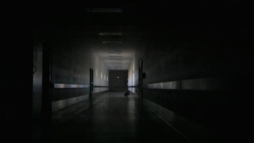HallwayVideoStill copy